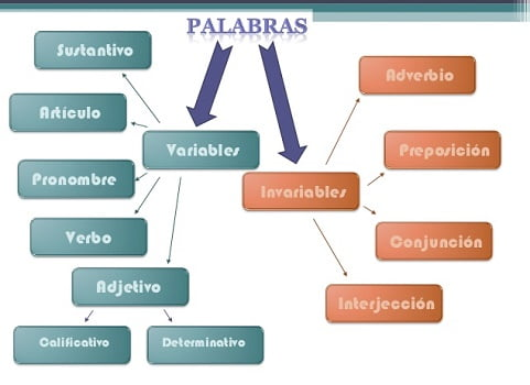 Palabras variables e invariables 1