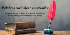 Palabras variables e invariables