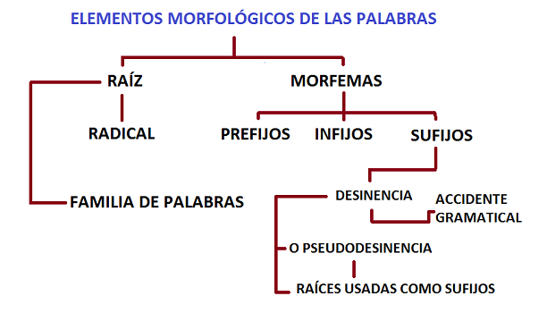 análisis morfólogico 3
