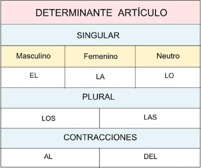 determinante articulo
