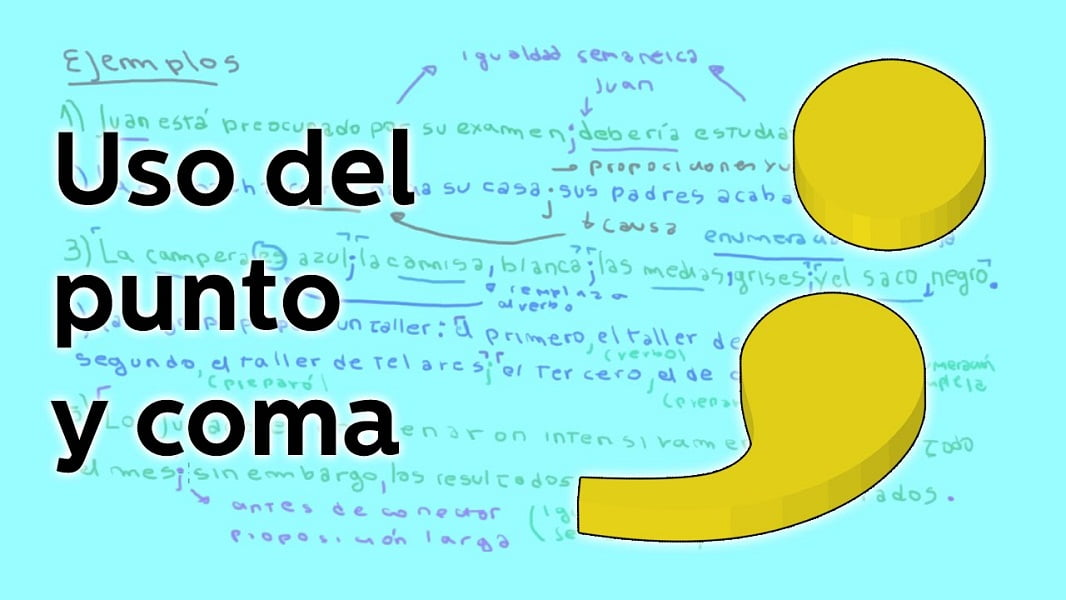 El punto y coma_1